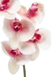 Bilde av Kunstig Orkide Stilk Rosa/Hvit 83cm