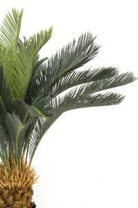 Bilde av Kunstig Cycas Palme Revoluta 90cm