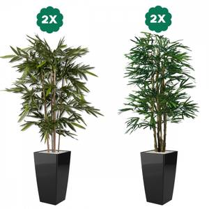 Bilde av 2 Stk Bambus & 2 Stk Palmer i Designpotter 180cm