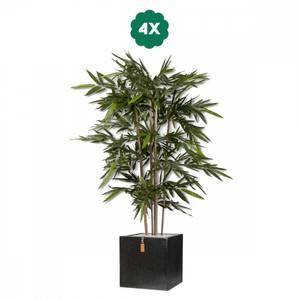 Bilde av 4 Stk Kunstige Bambus i Potter 180cm