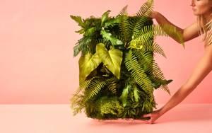 Bilde av Kunstig Plantevegg UV 60x40cm