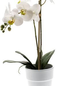 Bilde av Kunstig Orkide i Potte Hvit 65cm