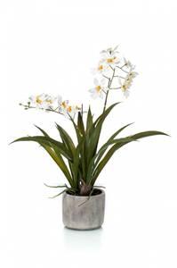 Bilde av Kunstig Oncidium Orkide Kremhvit i Potte 45cm