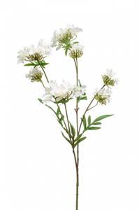 Bilde av Kunstig Verbena Blomst Kremhvit 68cm