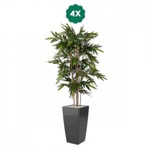 Bilde av 4 Stk Kunstige Bambus i Designpotter 180cm